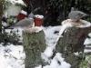 Wood-Pigeons-sharing-dinner