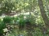 Spa Ponds
